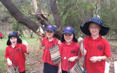 Term 1 Bush Craft